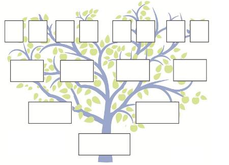 classification des donn es et structures arborescentes. Black Bedroom Furniture Sets. Home Design Ideas